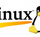 linux server attack