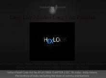 Hexlook hackers