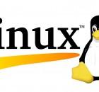 linux server attack